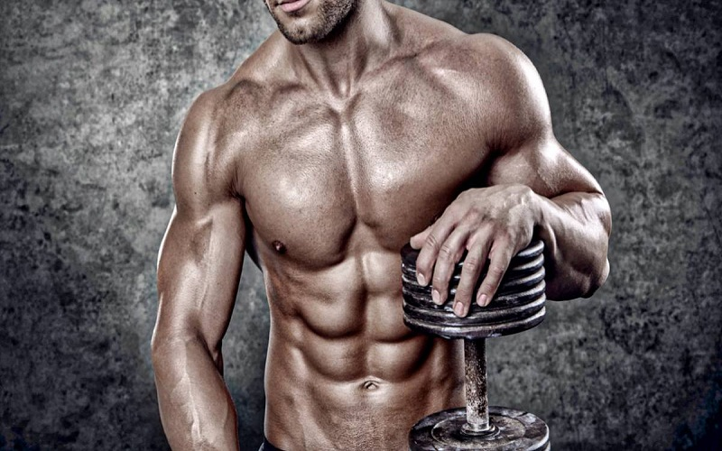 discover muscle mass