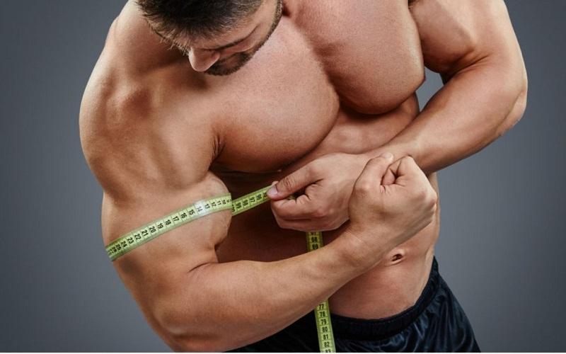 better muscle mass